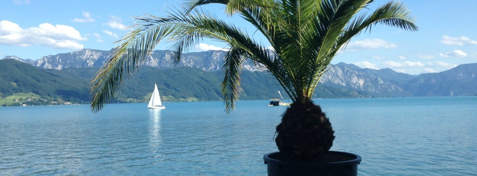 Attersee Sommer 2017