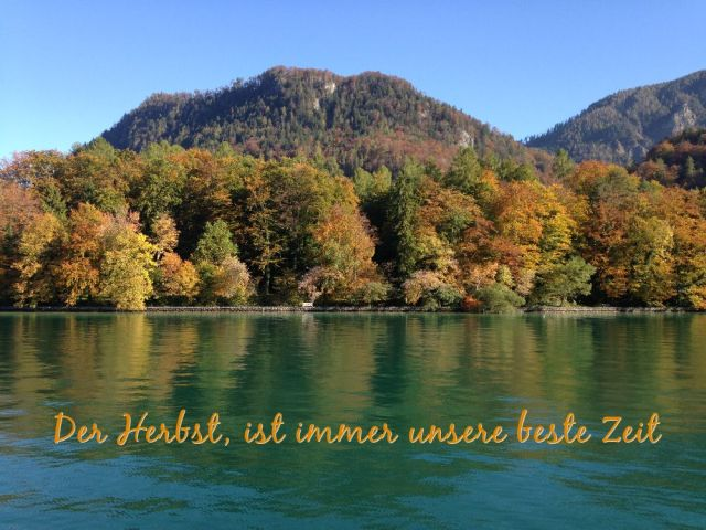 Attersee Herbst I