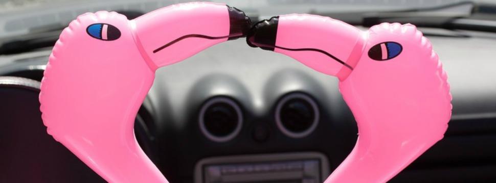 flamingo-1554270_960_720