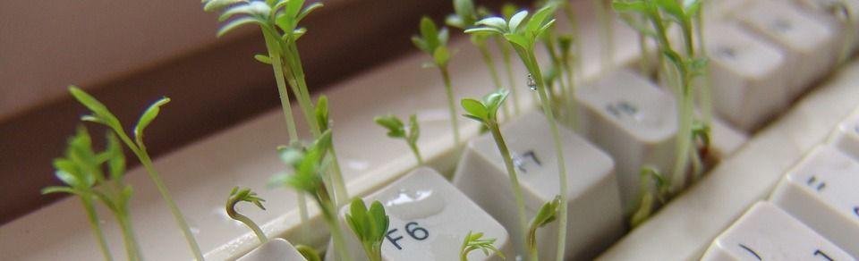 Kresse aus Tastatur