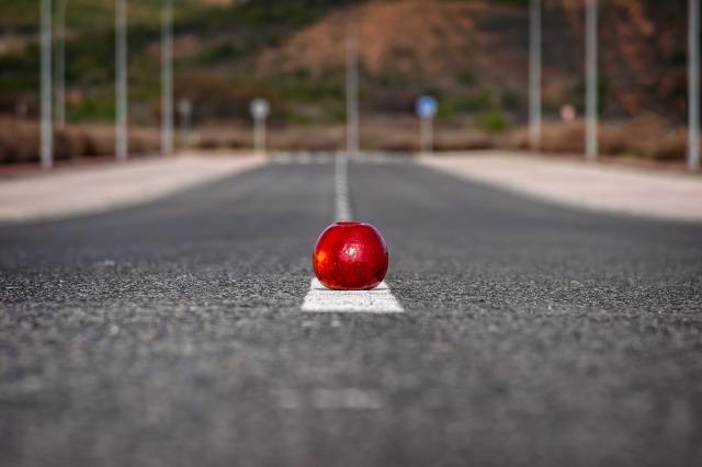 Tama66 roter Apfel Pixabay.jpg